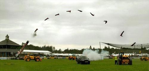 Как это происходит можно увидеть благодаря фотографу и однофамильцу прыгуна, Биллу Смиту, который сделал детальную раскадровку такого прыжка со своего профессионального «Никона»…